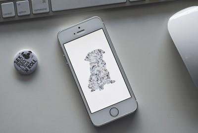 Pug Print Phone Wallpaper | www.thepugdiary.com