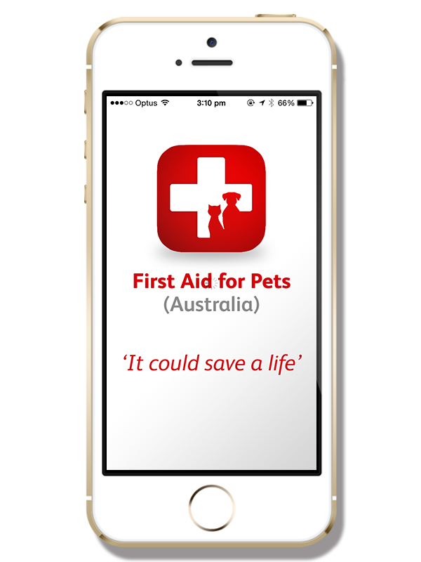 First Aid for Pets Australia | www.thepugdiary.com