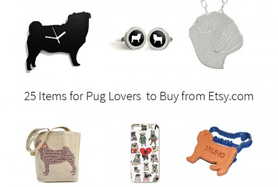 25 Items for Pug Lovers to Buy from Etsy.com | www.thepugdiary.com