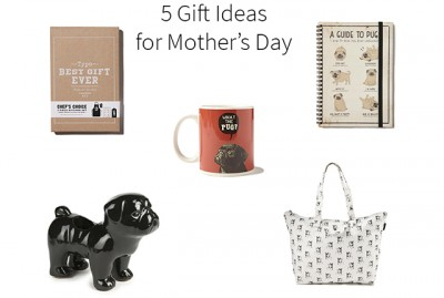 5 Gift Ideas for Mother's Day | www.thepugdiary.com