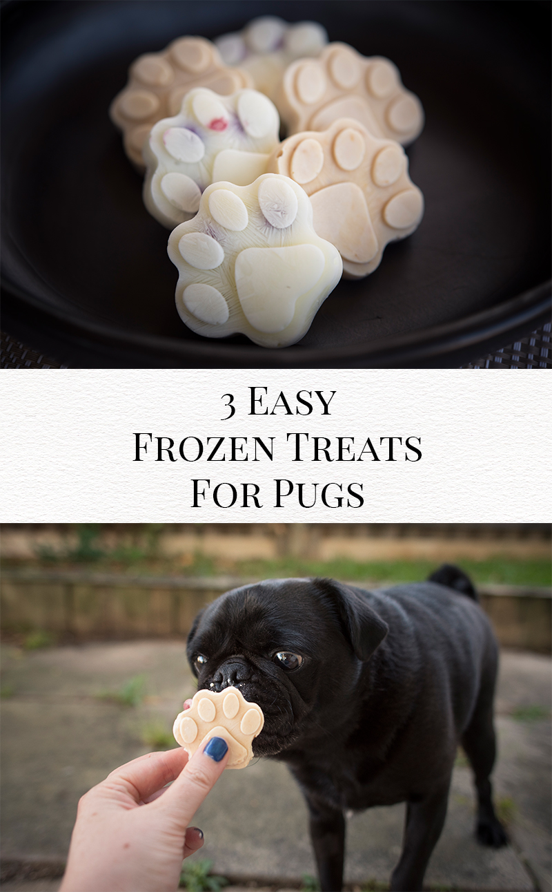 3 Easy Frozen Treats for Pugs | www.thepugdiary.com