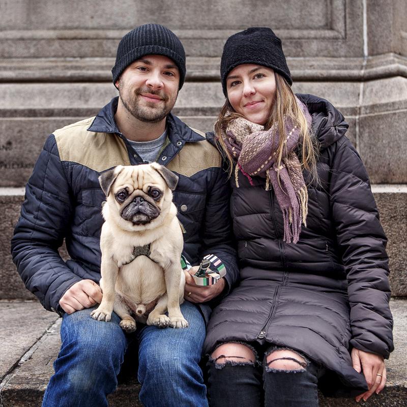 Caitlin + Derek's Pug Parent Profile   www.thepugdiary.com