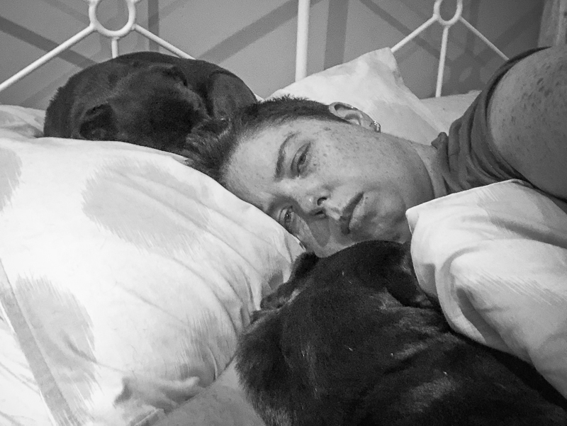 Confessions of a Pug Mum: My Pugs are My Saviour   www.thepugdiary.com