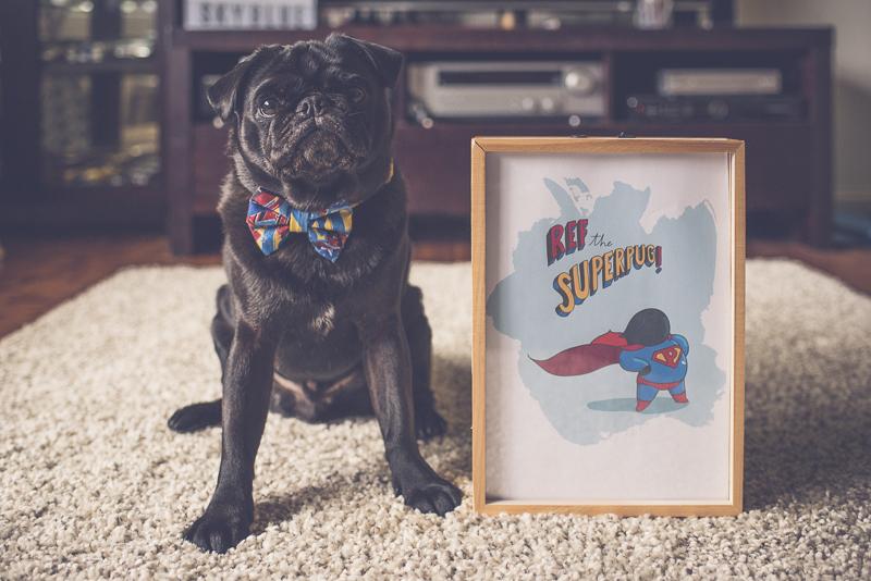 Custom Pug Art by 157ofGemma | www.thepugdiary.com