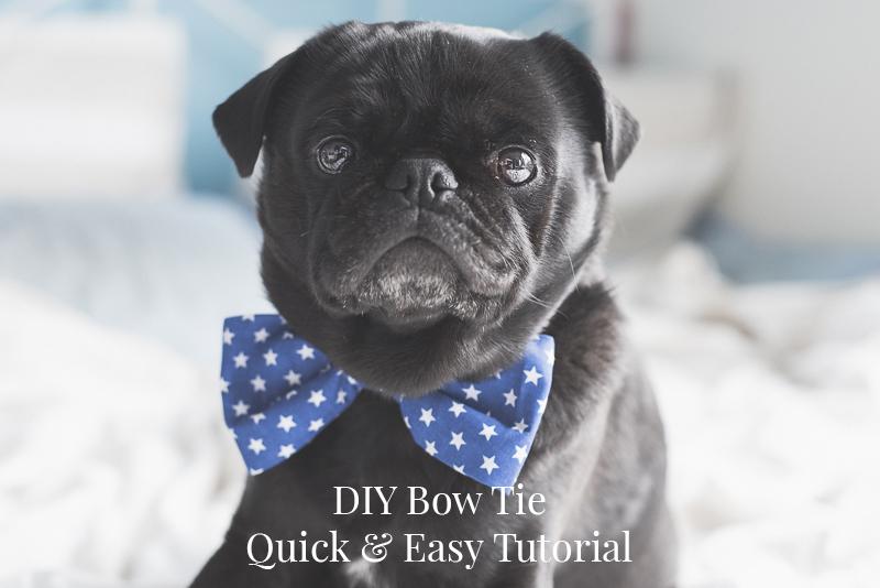 DIY Bow Tie | www.thepugdiary.com