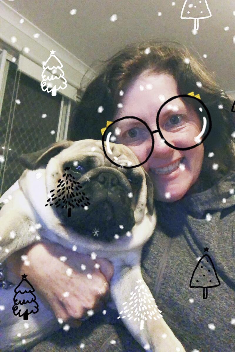 Doug's Social Pug Profile | www.thepugdiary.com