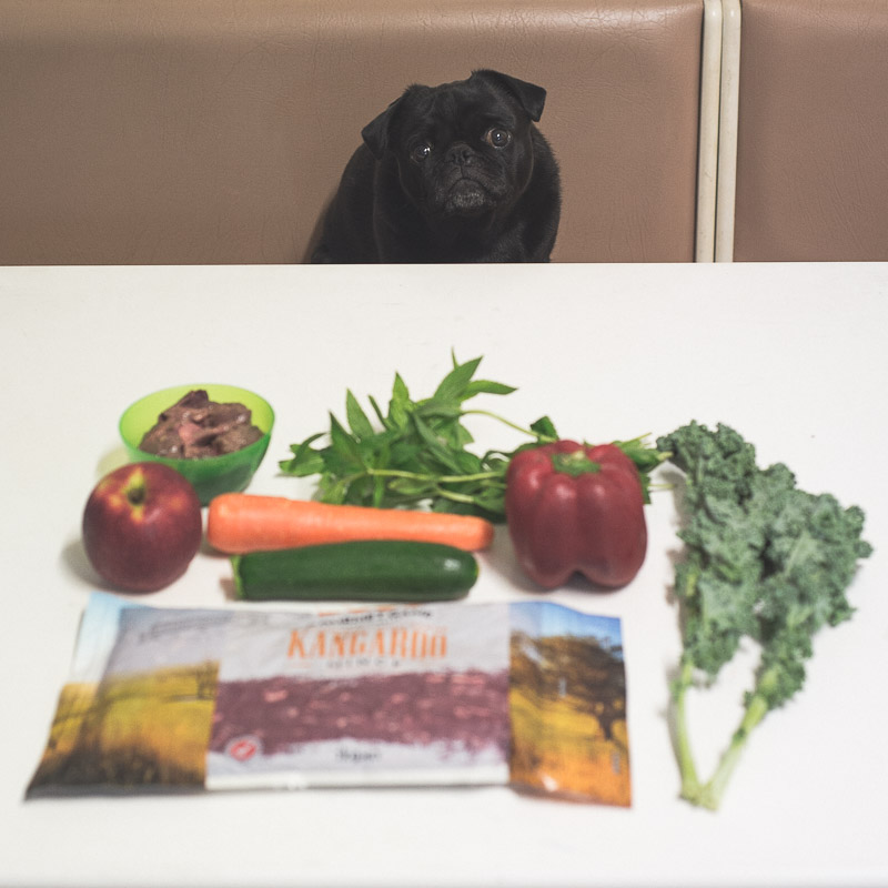 Going Raw… Why I'm Stoked I Did | www.thepugdiary.com