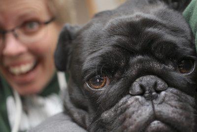 Janice's Pug Parent Profile | www.thepugdiary.com