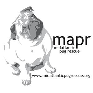 Mid Atlantic Pug Rescue | www.thepugdiary.com