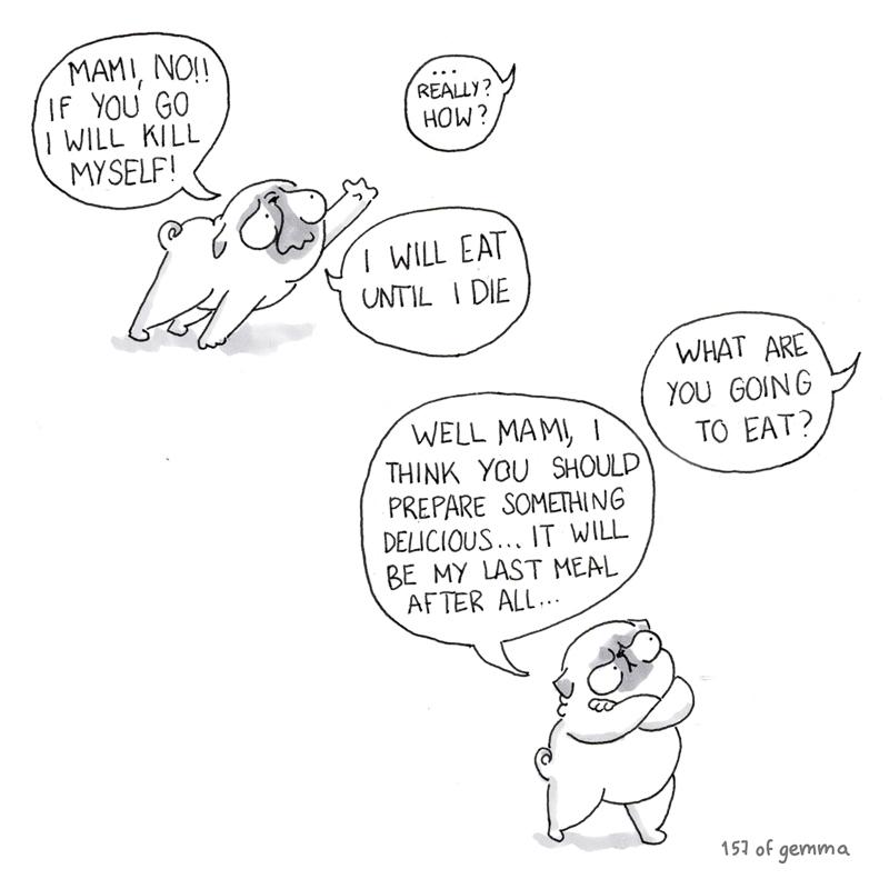 Mocha's Social Pug Profile | www.thepugdiary.com