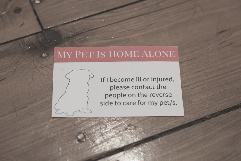 DIY My Pet Is Home Alone Card | www.thepugdiary.com