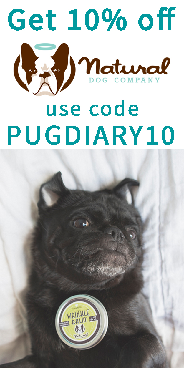 Natural Dog Company | www.thepugdiary.com