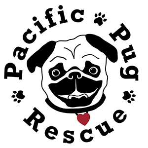 Pacific Pug Rescue | www.thepugdiary.com