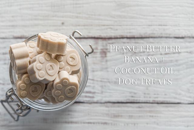 Peanut Butter, Banana + Coconut Oil Dog Treats Recipe   www.thepugdiary.com