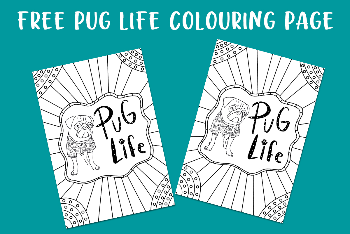 Free Pug Life Colouring Page