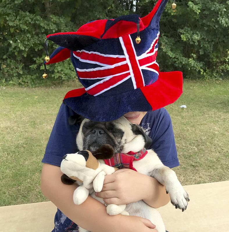 Cate's Pug Parent Profile | www.thepugdiary.com