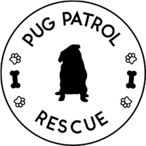 Pug Patrol Rescue Australia | www.thepugdiary.com