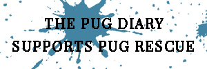 The Pug Diary Supports Pug Rescue | www.thepugdiary.com
