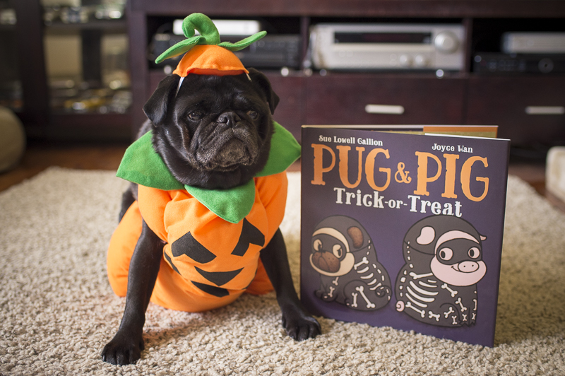 WIN 1 of 4 Pug & Pig Trick or Treat Books | www.thepugdiary.com