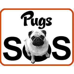Pugs SOS | www.thepugdiary.com