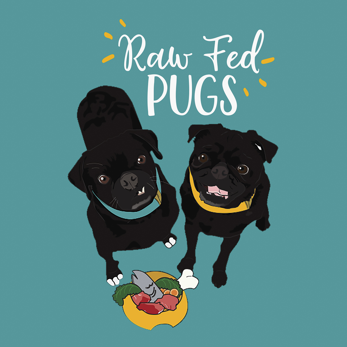 A Facebook Group for Raw Feeding Pugs | www.thepugdiary.com