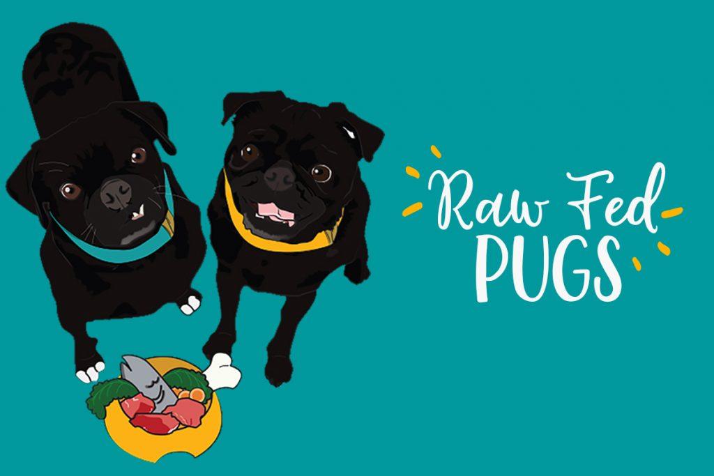Raw_Fed_Pugs_Pic_Logo_