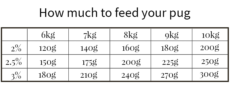 Raw Feeding for Pugs: How Much to Feed | www.thepugdiary.com