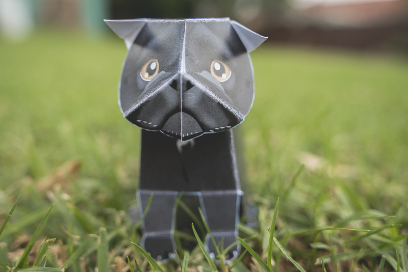 Custom Pug Art by Kooee Papercraft | www.thepugdiary.com