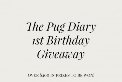 The Pug Diary's 1st Birthday Giveaway | www.thepugdiary.com