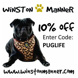 Winston Manner | www.thepugdiary.com
