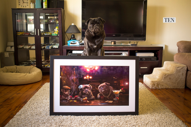 2017 Holiday Gift Guide for Pugs: The Human   www.thepugdiary.com