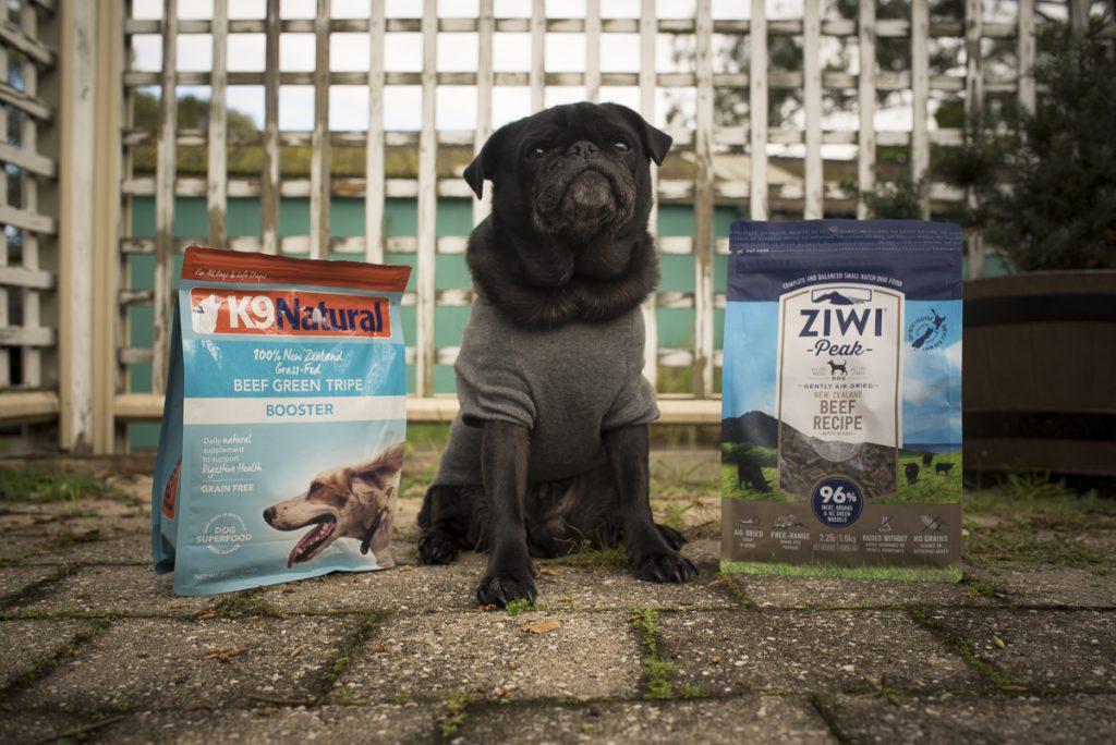 Travel Food Options for Raw Fed Pugs | www.thepugdiary.com