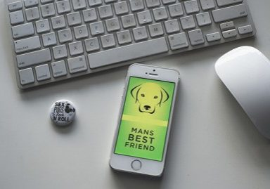 Mans Best Friend | www.thepugdiary.com