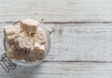 Peanut Butter, Banana + Coconut Oil Dog Treats Recipe | www.thepugdiary.com