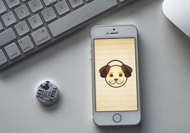 Sound Proof Puppy Training | www.thepugdiary.com