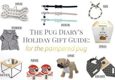 the_pug_dairys_christmas_guide_2016_pampered_pug_feature