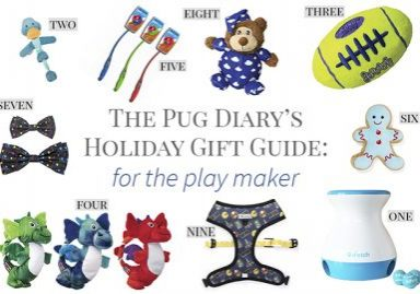 2017 Holiday Gift Guide for Pugs: The Play Maker | www.thepugdiary.com