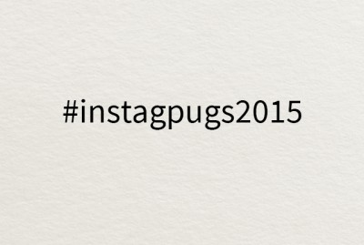 The Top 20 Pugs of Instagram 2015