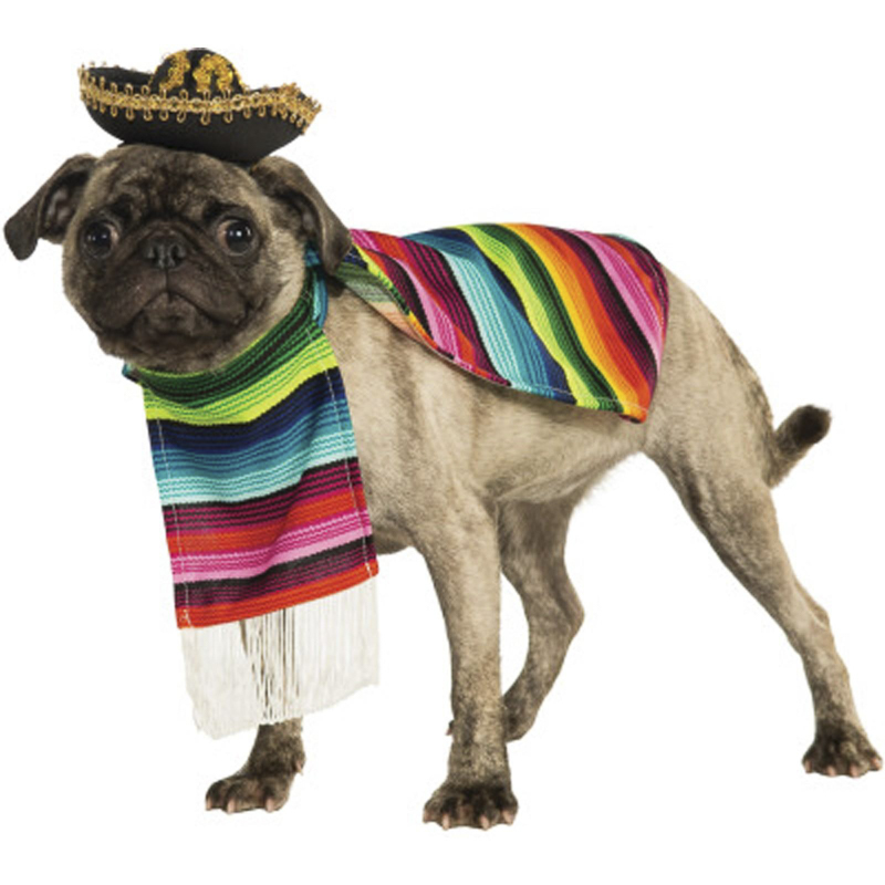 10 Must Have Costumes for Dress Up Your Pet Day | www.thepugdiary.com