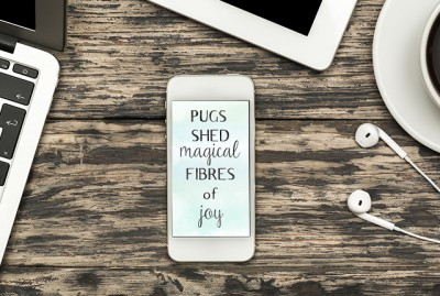 Pugs Shed Magical Fibres of Joy Phone Wallpaper | www.thepugdiary.com